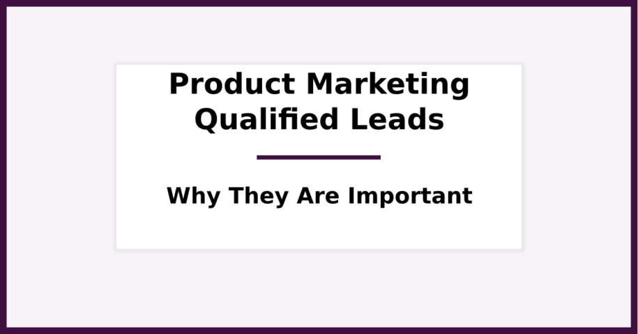 What Are Product Marketing Qualified Leads (PMQLs). Featured Image for Blog Post.